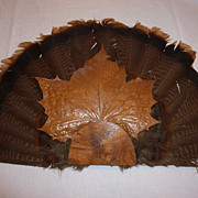Unusual Wild Turkey Feather Fan Wall Decoration