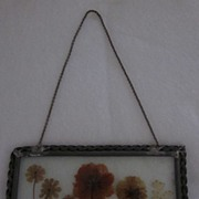 Dried Flowers Encased in Glass, with Metal Frame