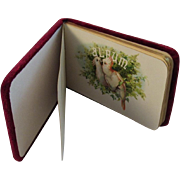 Victorian Autograph Album with Bird Lithographs and Red Velvet Cover