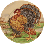 Midwinter Turkey Transferware Dinner Plate