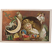 Woolson Spice Lion Coffee Christmas Carol Advertising Trade Card Victorian