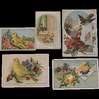 5 Bird Advertising Trade Cards