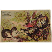 A.S.T. Co Cat, Birds & Shoe Trade Card American Shoe Tip Company