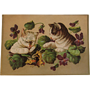 Kitty Cats Playing with a Butterfly - Embossed Victorian Card