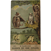 1885 Drunken Frog & Owl Dissipation Trade Card