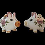 Pig Salt & Pepper Shakers Japan Ceramics in Original Box