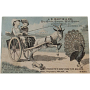 1882 Dog, Peacock and Goat Cart Victorian Trade Card Graf Bros The Esthetic Drive for Titsworth's Sure Cure for Malaria