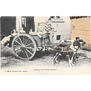 Dog Drawn Milk Cart Postcard Belgium Attelage De Chiens Flamand Belgian