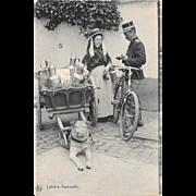 Dog Drawn Milk Cart Postcard Belgium Laitiere Flamande Belgian
