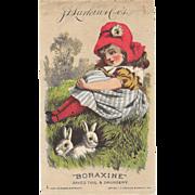 1882 Larkin Boraxine Girl with Bunnies Victorian Trade Card