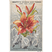 Beatty's Beethoven Organ Easter Tiger Lily Victorian Trade Card Pianofortes Washington New Jersey
