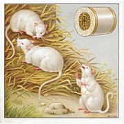 J & P Coats White Mice Victorian Trade Card Best Six Cord Thread Mouse