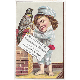 1881 Boy on Roof With Pet Bird Victorian Trade Card R Siedle Pittsburgh, PA Jeweler Litho by F A Chapman Series