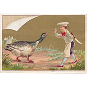 1884 Newtown Star Sheller Victorian Trade Card Chef and Turkey