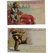 2 c1907 Embossed Jointed Bear Postcards Teddy Driving a Car