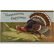Thanksgiving Tom Turkey Pecking Corn Embossed Postcard Unused Autumn Fall Colors