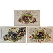 3 Unused Patriotic Thanksgiving Postcards with American Flag Shields Embossed Turkeys 631 632 633 Autumn Pumpkin