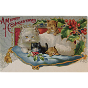 Christmas Cats on a Pillow Embossed Postcard Unused Kitty Kitties