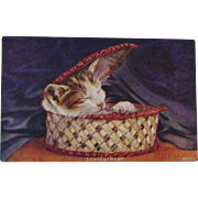 Contentment Sleeping Cat in a Basket Postcard