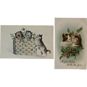 2 Christmas Cats with Holly Postcard 1 German Embossed by International Art Publishing Co and 1 with Basket Kitty Kittens Kitties