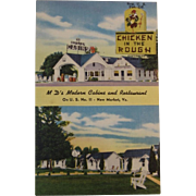 1940's Mid-Century Postcard from New Market Virginia - Chicken in the Rough