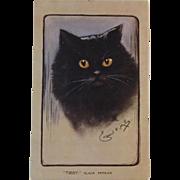 Artist Signed Black Persian Cat Postcard