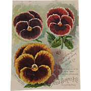 1892 Chromolithograph Large Pansy Floral Trade Card from W. Atlee Burpee & Co Advertising Pansies