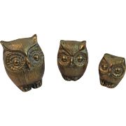 Brass Owl Family Graduated Sizes Vintage Mid Century Decor Mid-Century