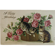 German Kitty Cats Basket Roses Birthday Postcard Embossed Germany