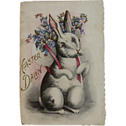 Clapsaddle Illustrated Children's Easter Dawn Book with Bunny on the Cover