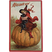 Tuck's Halloween Postcard Witch Black Cat on Pumpkin Embossed Printed in Saxony Germany Raphael Tuck & Sons