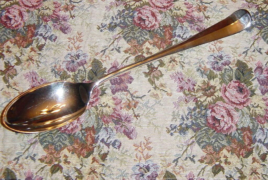 Eales 1779 Silverplate Long Handled Serving Spoon from Italy