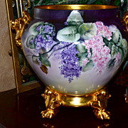 Limoges Huge Gold Handled Jardiniere with Pink/Purple Wisteria & Gold Plinth