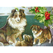 A Joyful Chirstmas Incised Postcard Collie Dogs And Holly Silver Foil Border