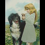 Girl In Silk Dress With A Newfoundland Dog Postcard