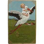 Vintage Embossed Birth Announcement Baby Riding Back Of Stork Postcard Stork Card Series No 1