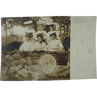 RPPC Real Photo Of Ladies In Cart With Three Legged Donkey Postcard