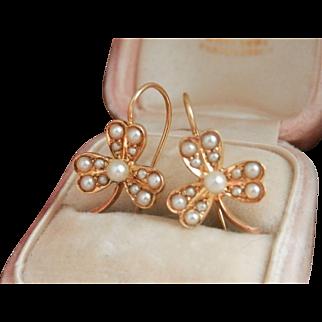 Antique 15K 15CT Natural Seed Pearl Flower Drop Earrings