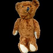 """1920's 14"""" Knickerbocker Teddy Bear"""