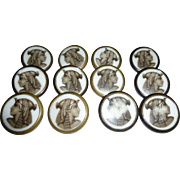 Rare P&H Paris Set Of 12 Egyptian Revival Buttons