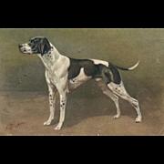 Artist signed Birst Pointer Dog #98