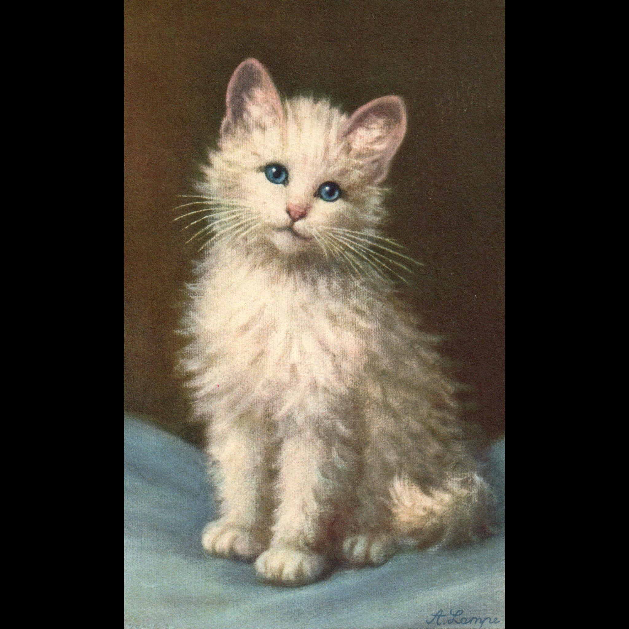 Artist Signed A Lampe White Kitten cat  #168