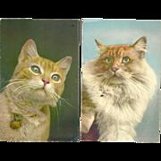Set of 2 Vintage Cat Postcards 1950's