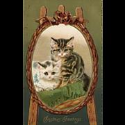 1911 John Winsch Kitten Christmas Greeting Postcard
