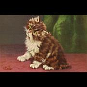 Fabulous Artist Signed D Merlin Cat / Kitten vintage Postcard No 160 Series