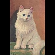 Artist Signed Wm Jorge White blue eyed cat vintage Postcard Alma #325