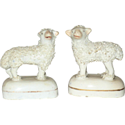 2 Tiny Woolly Lambs on Bases One Faces Right One Faces Left