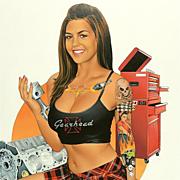 American Art - Dave Nestler: Gearhead, Skin&Ink Original Cover Art