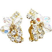 Vintage Dynamite Juliana DeLizza and Elster Clip Earrings With Clear Bead Dangles