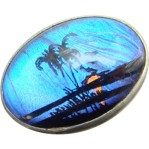 Vintage Butterfly Wing Pin Brooch 1950s Tropical Beach Sunset Small